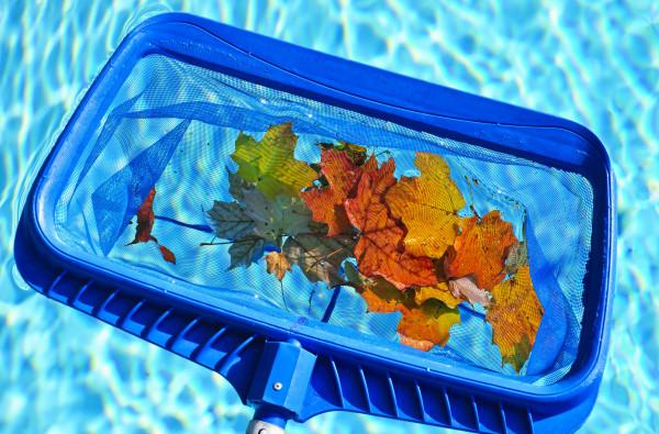 Poolpflege-Blog