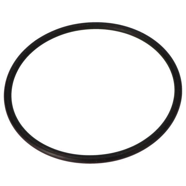 O-Ring für Klarsicheinsatz 105 x 5 mm